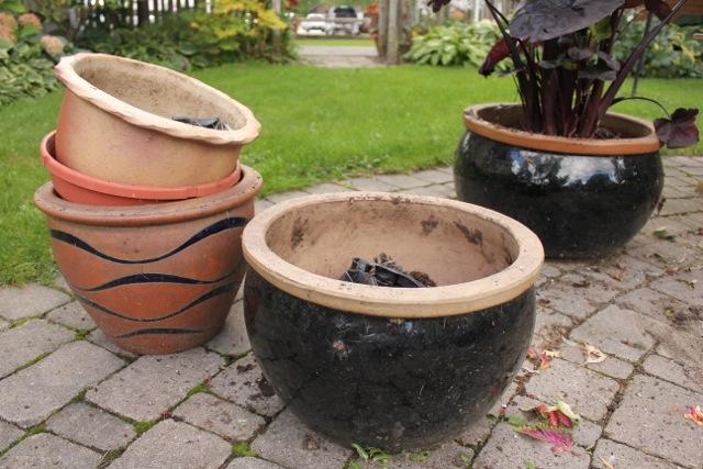 fall pots2
