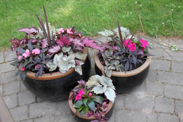 Three Black Pots