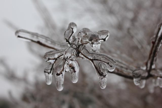 Ice StormMar