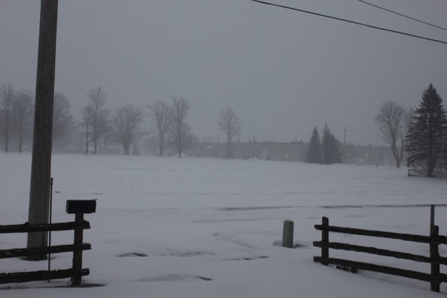 Snow Mar 1