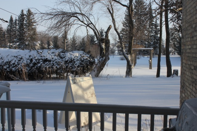 Snow Mar 2