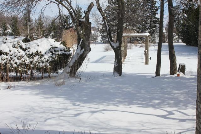 Snow Apr 4/16