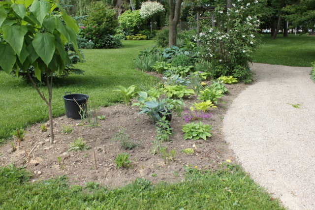Path Bed - New