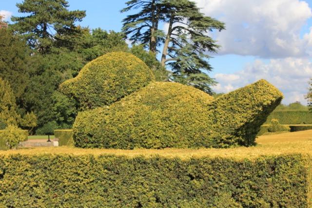 English Garden - Topiary