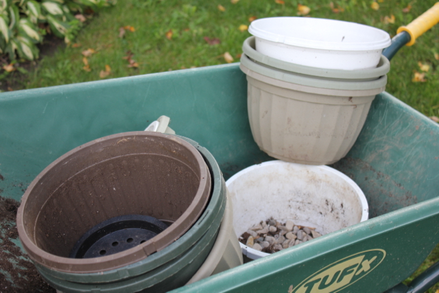 Fall Cleanup - pots